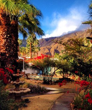Palm Springs Jardin