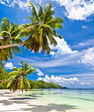 Billet avion praslin seychelles prix billet praslin seychelles avec - Office de tourisme des seychelles ...