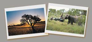 rencontres Nelspruit Mpumalanga